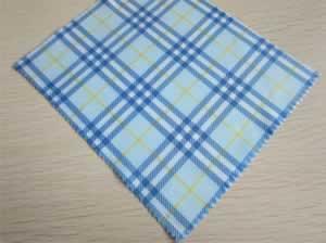 Glasses cloth and bag