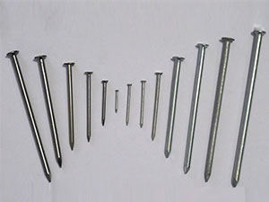 Iron Nails,galvanized square boat nails,galvanized iron nails