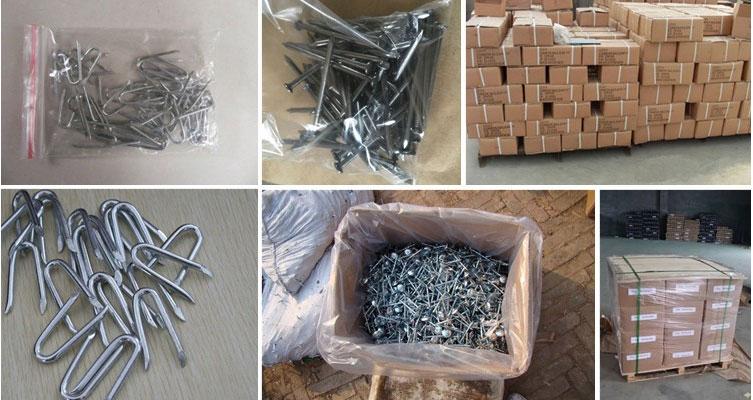 Sod Nails,galvanized square boat nails,galvanized iron nails,iron nails