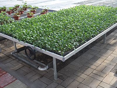 Welded Mesh Rolling Bench,greenhouse rolling benches