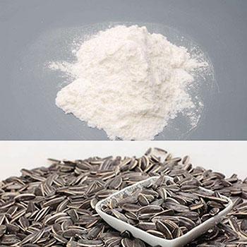 Sunflower seed protein powder