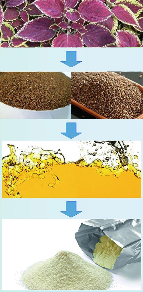 Perilla seed oil powder